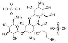 amikacin-thuoc-nhom-khang-sinh-aminoglycoside